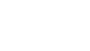 Wholebeing Health & Meditation Logo - White